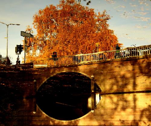 Utrecht gracht weerspiegeling. Foto: Sanne van der Beek